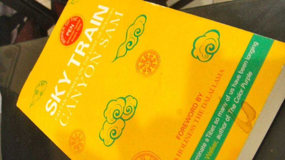 sky train book